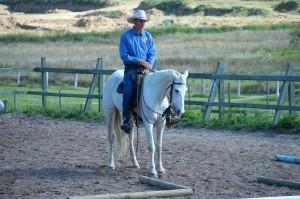 HorseTraining1200