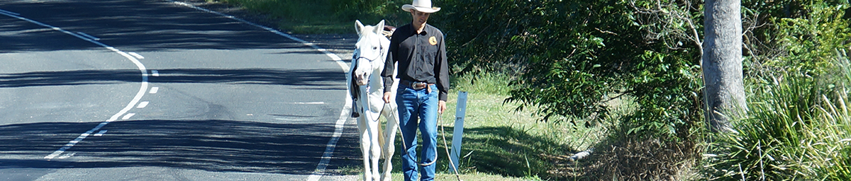 Mobil-Horsemanship-Training-We-come-to-your-home-or-equestrian-centre