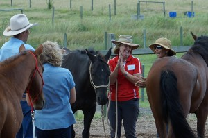 Horsemanship-group